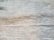 織縞color20「ライトグレー」