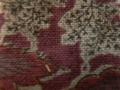 木綿和更紗「草花文様/赤色(6256)」